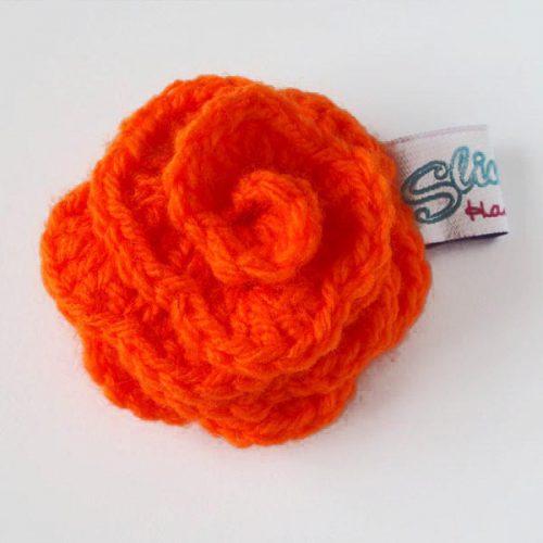 Orange rose front